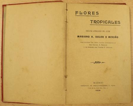 Flores tropicales 2